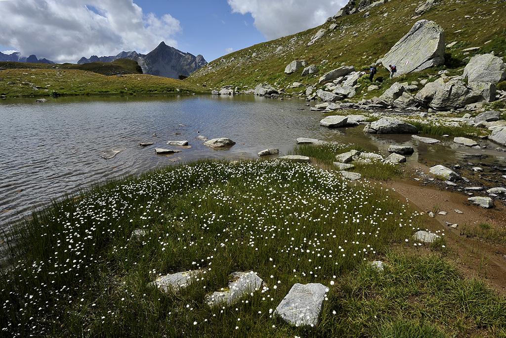 Wanderung Piemont 2014, 24. - 30. August © Alison Pouliot