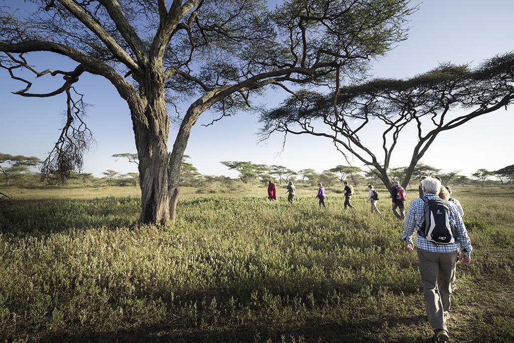 Fusssafari, Ndutu Lake, Naturreise Tansania, Aktivferien, 6.-22. Februar 2016   © Valerie Chetelat
