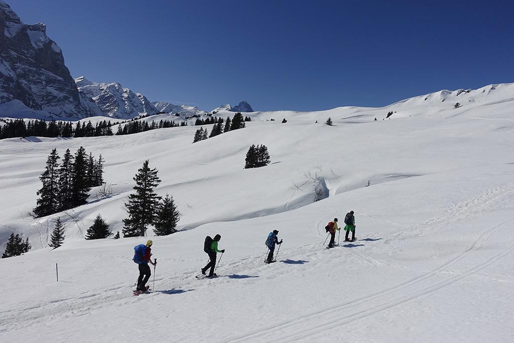 Schneeschuhwanderung Grosse Scheidegg, 19.-20. Maerz 2016, Mammut Alpine School / Bergschule Uri © Valerie Chetelat