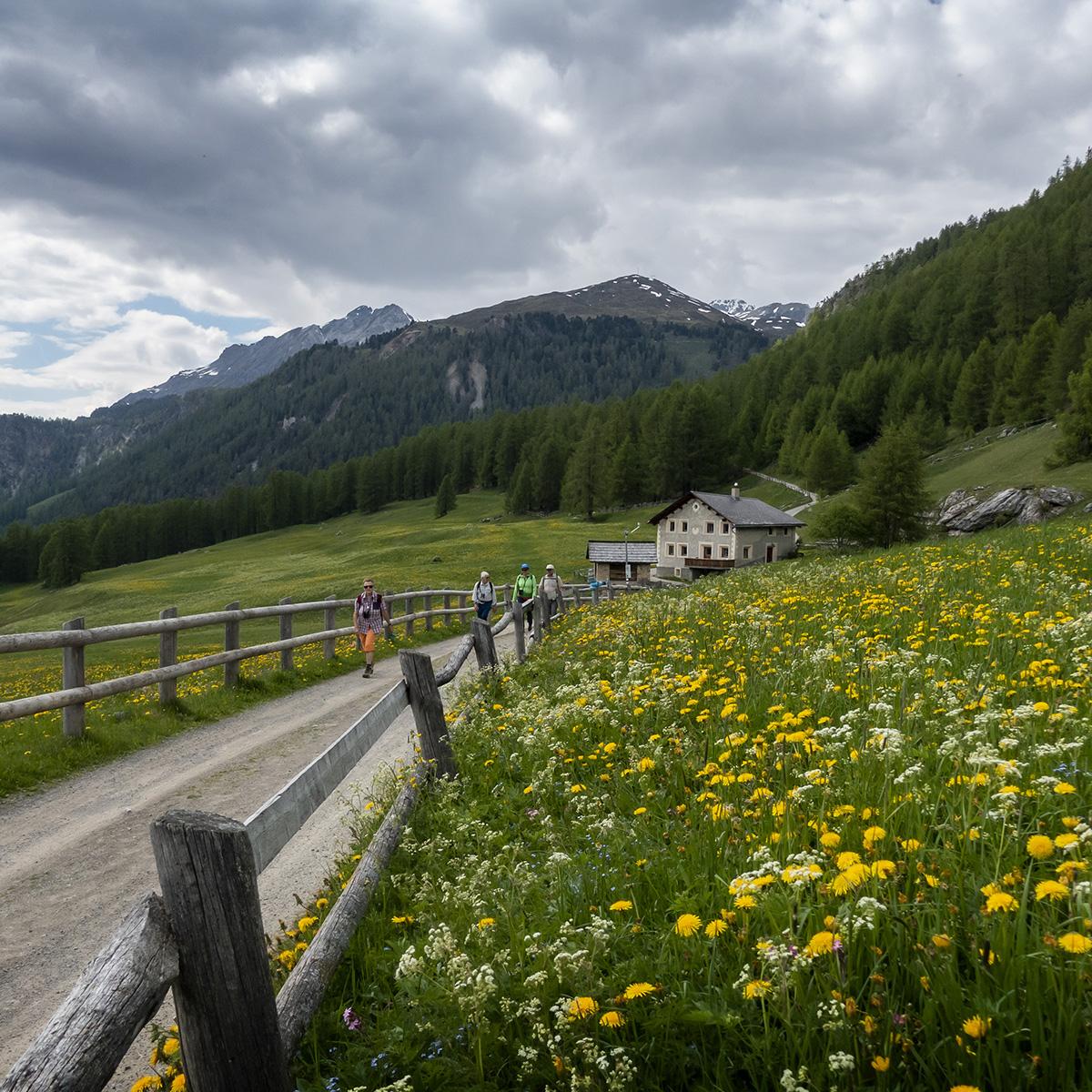 Wanderung Nationalpark / Val Muestair, 9. - 13. Juni 2021 © Valerie Chetelat